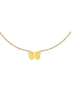 ketting met hanger, vlinder, bedel, stainless steel, rvs, roest vrij staal, sieraden, accessoires, dames